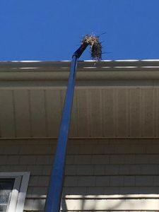 SkyVac Gutter Cleaning